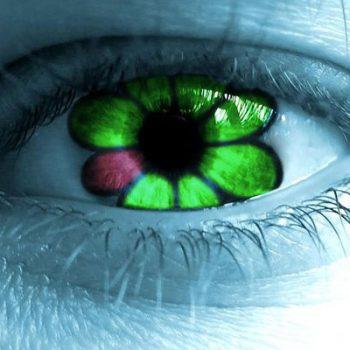 ICQ volta e ganha força nas redes sociais